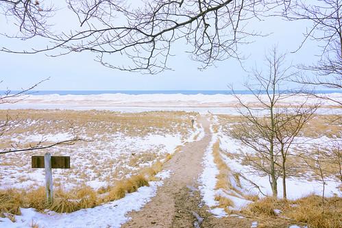 lake lakeshore lakemichigan winter path beach beachgrass snow framed