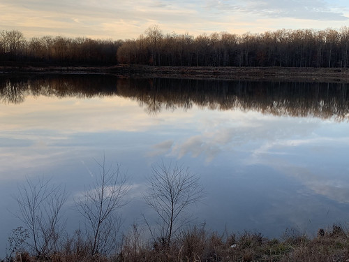 reflections reflectionsinwater wolfrivertrail nature trees lake clouds sky nearsunset hiking