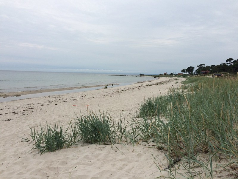 Ahus shoreline