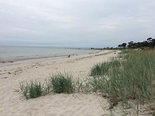 Ahus shoreline | by DarleneEats
