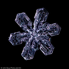 Sky Crystal (Snowflake)