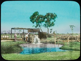 Two men at a bore which is discharging water, Queensland, ca. 1910