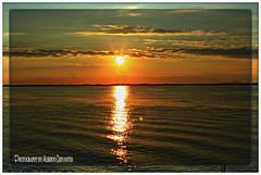 ME ENAMORÉ DEL SOL. I LOVED THE SUN. NEW YORK CITY.