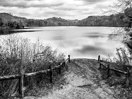 radnorlake nashville tennessee blackandwhite lake em1markii 17mmf18 mirrorless olympus
