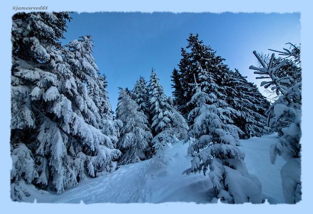 Neige , neige , neige...