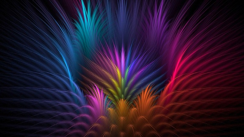 Обои перья, цветок, лепестки, лучи, линии, объем, симметрия картинки на рабочий стол, фото скачать бесплатно