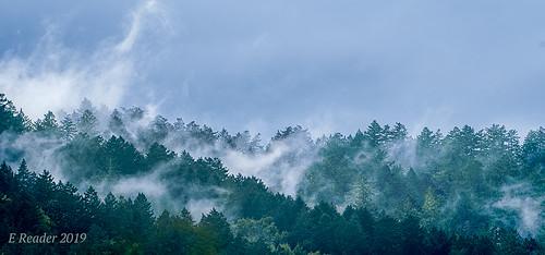 fog cloud atmosphere weather upslopefog watervapor ground forest mountain droplets nature risingterrain marvel outdoor tree sky mist