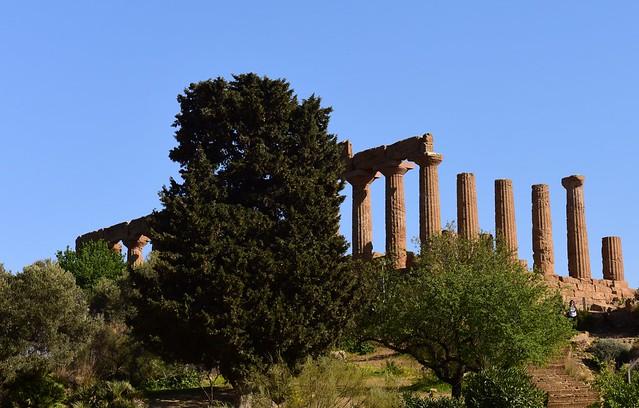 Valle dei Templi, Agrigento, Sicily DSC_8959 (2)