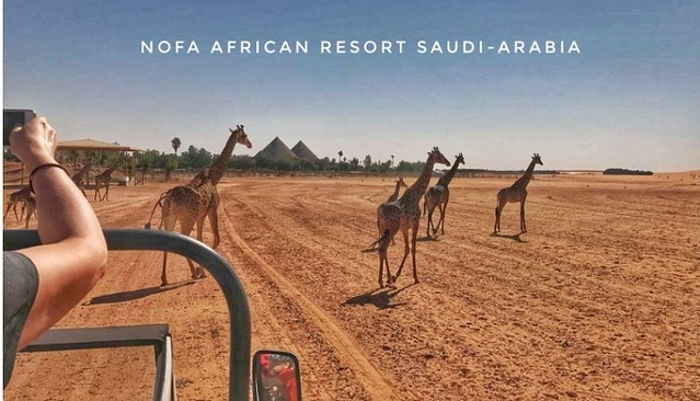5059 Nofa Wildlife Safari Park and Resort in Riyadh 01