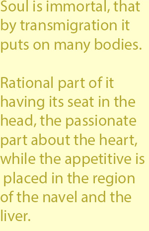 3   rational part of it having its seat in the head, the passionate part about the heart, while the appetitive is placed in the region of the navel and the liver.