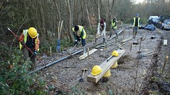 Seating Area at Paices Wood (c) A R Wallington 2017