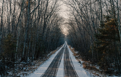 december minnesota saintcroixstatepark stcroixstatepark dirtroad road snow statepark trees winter crosbytownship unitedstates us