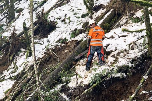 or58 treeremoval trees hazardtrees oregondot oregon damage wood chainsaw safety snow