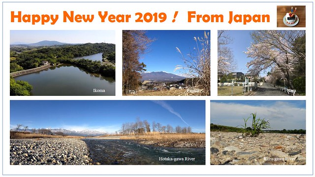 Happy New Year 2019 !!! From Japan