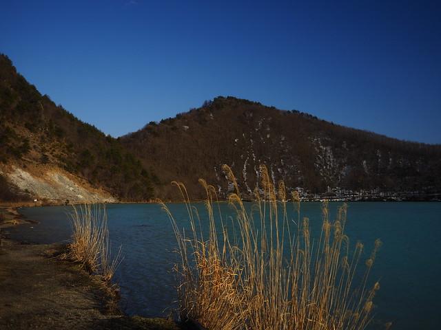 薄と青い湖