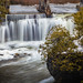 Dam at Rockwood Conservation by Photos by Olar