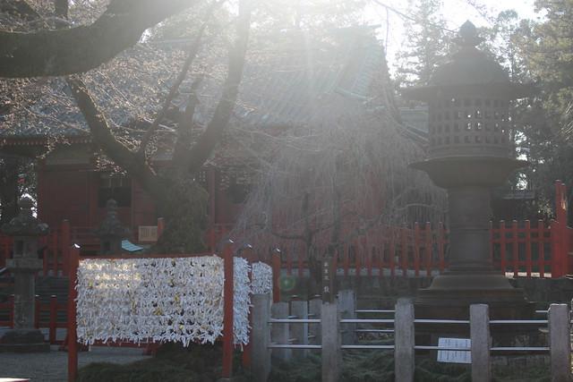 seradatoshogu-gosyuin046