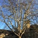 2019_02_13_Wasserschloss_Brugg_Beat (94)