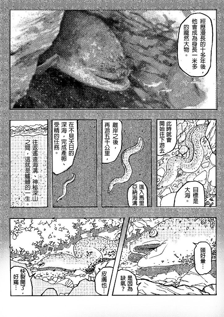 溪流馬拉松-下07