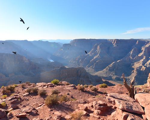 5. Vistas del Gran Cañón desde el mirador Guano Point   by Diario de un Mentiroso