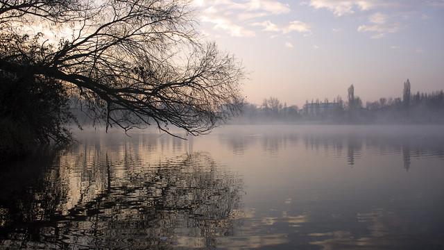 Pond - Milano