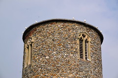 'seven white doves, now sentinel upon the tower top' (Sir Percival)