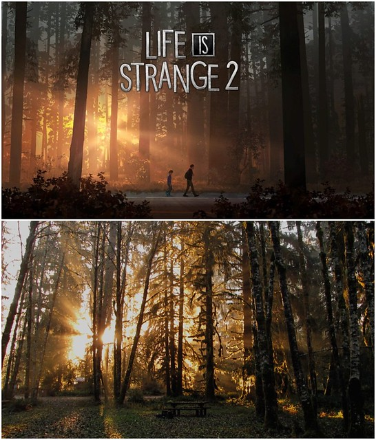 Life really is strange!