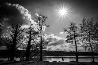 walk at the lake   by NEX69