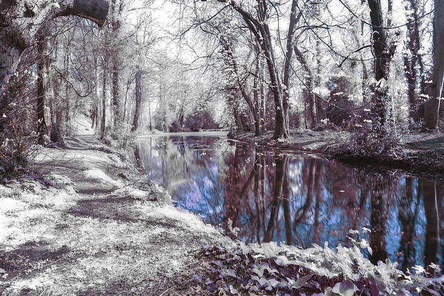 another IR variation~ in Explore