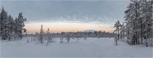 Ylläs-Finnland_92438P | by uwe_cani