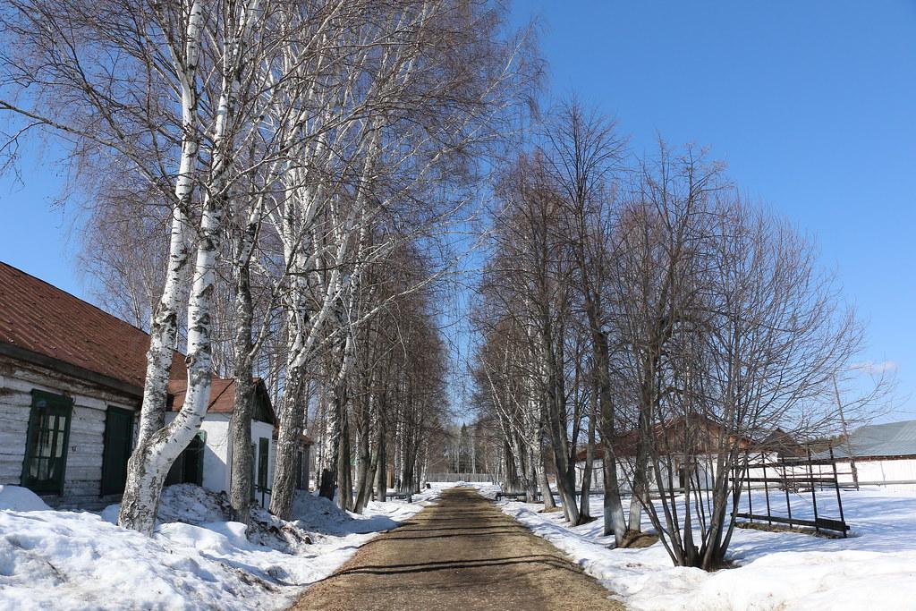 Perm_apr19_599