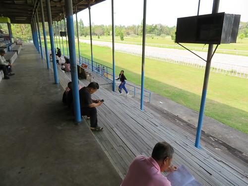 チェンマイ競馬場の観覧席をやや4コーナー寄りに移動