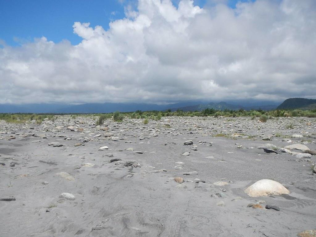 卑南溪北岸高灘地,條播植樹之前,原是寸草不生之地。圖片來源:台東林管處