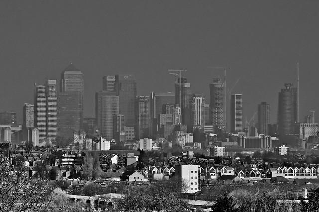 Misty Metropolis.