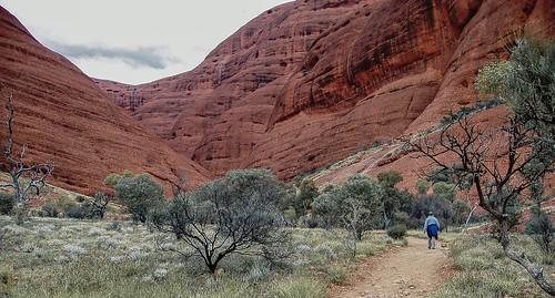 Uluru_17.jpg