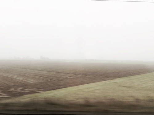 Fields of Flanders | by hedshot