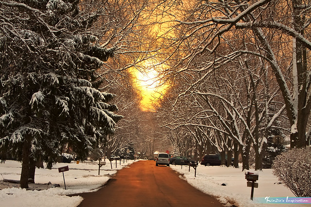 36 Hours after Snow Storm, Village of Wheaton Illinois USA *A Beautiful Nature*