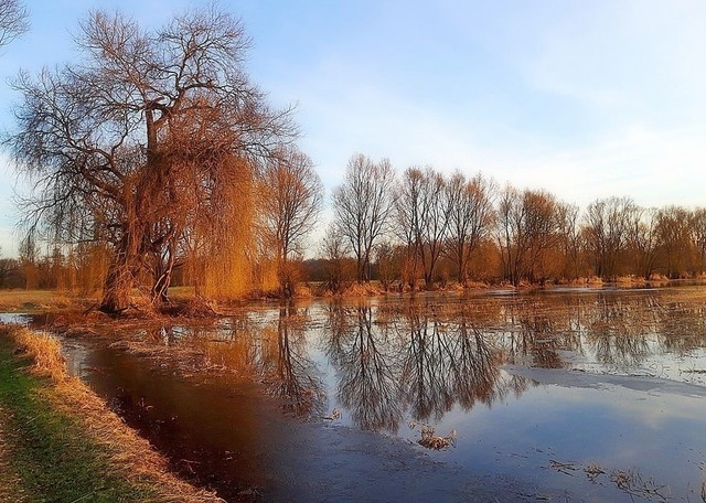 Une belle après-midi de février