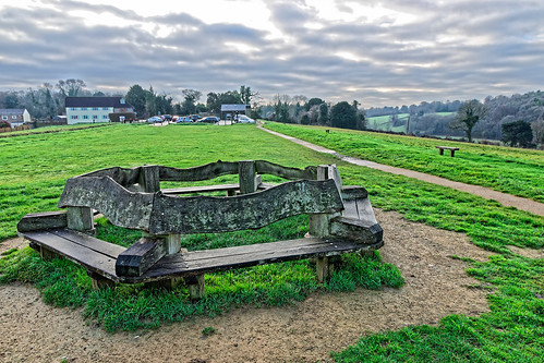 bench circular hexagon hexagonal seat park field grass tree path footpath pathway sky cloud morning christmas wooden ghe