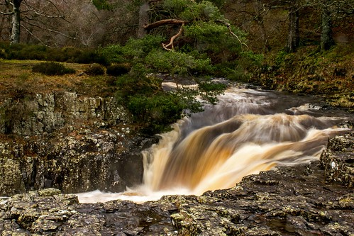lowforce rivertees waterfall coth5