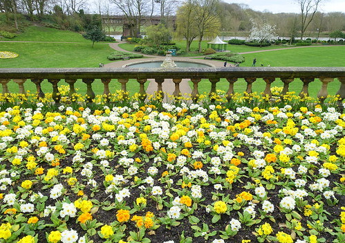 Blooming at Miller Park   by Tony Worrall