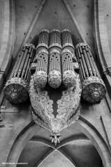 kerk orgel kathedraal van Trier