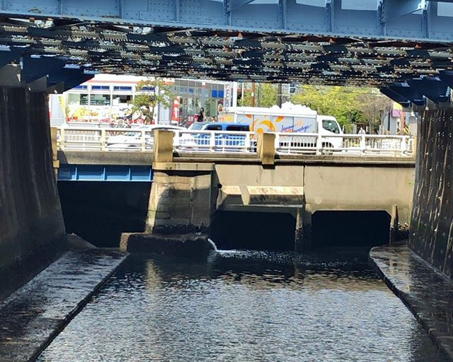 滝の川の境橋を下流側から。合流地点なのは知っていたが、もともとはどんな構造になっていたのやら。無理矢理感が強い。 #横浜暗渠散歩
