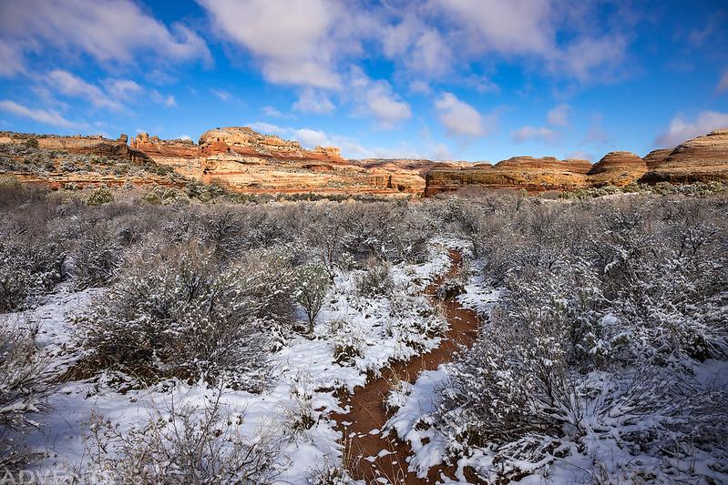 Salt Creek Snow