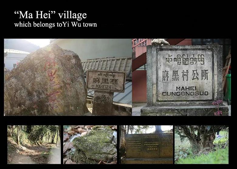 """2019 XiaGuan """"Ma Hei Gong She"""" (Mahei Commune) Old Tree 357g Cake Puerh Raw Tea Sheng Cha"""