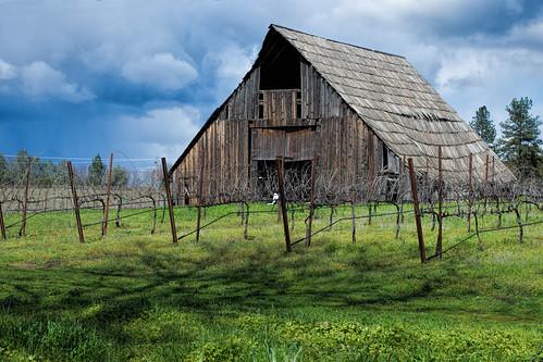 california d7200 nikon sierranevada barn foothills landscape vineyard winecountry ©bradmaberto busbycellars