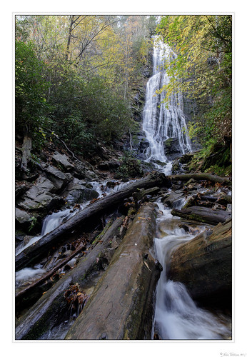 americansouth cpl canoneos5dmkiv carolinas cherokee cothronphotography distagon2128ze distagont2821ze dixie georgiaphotographer johncothron mingocreek mingofalls nc northcarolina quallaboundary quallaboundarylandtrust southatlanticstates southernregion swaincounty thesouth us usa usaphotography unitedstatesofamerica zeissdistagont2821ze afternoonlight autumn circularpolarizingfilter deadtree fall falling flowing forest landscape log longexposure nature outdoor outside partlycloudy rock scenic water waterfall img21310171024co4122018 ©johncothron2017 colorsofmingo