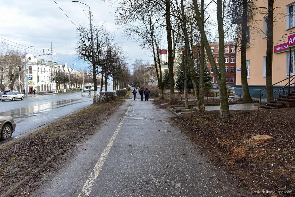 Кусты и газон вместо забора во Владимире