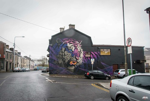 Sonny - Purple Tiger in Waterford-2 | by streetartunitedstates