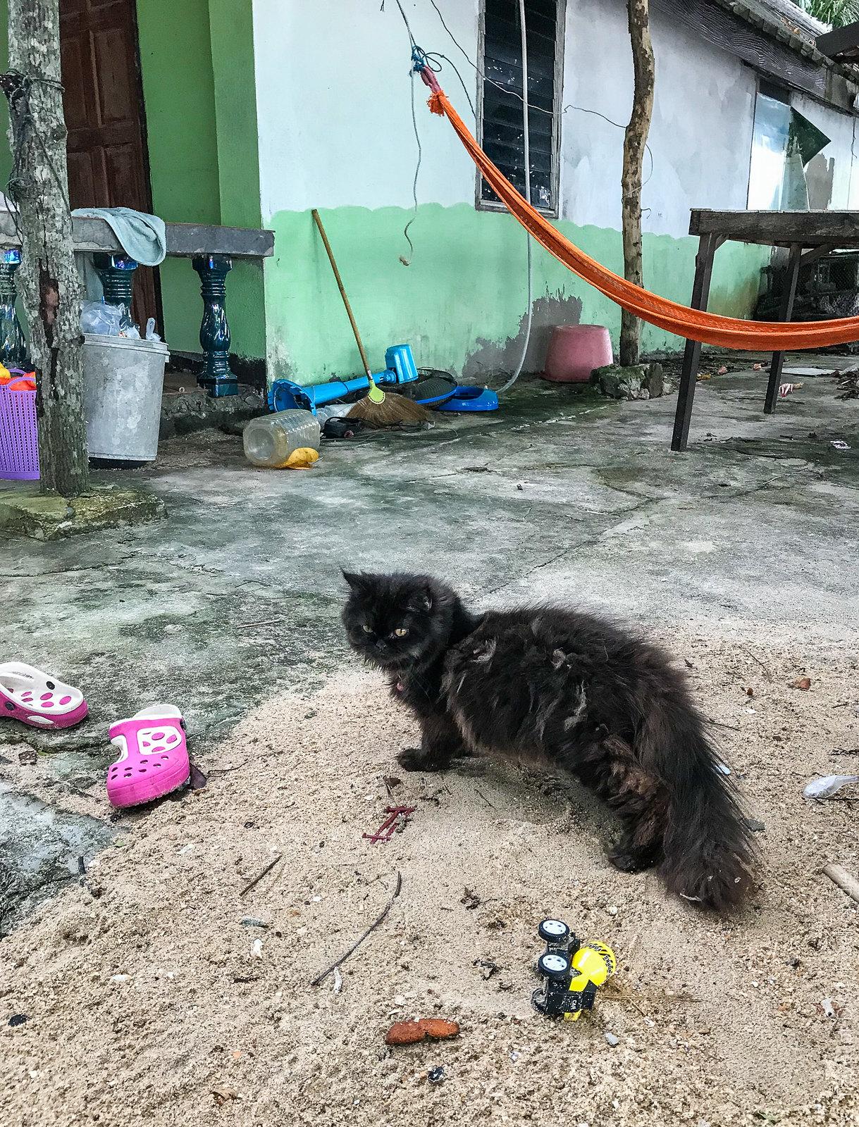 Coconut-Island-Phuket-iphone-0623